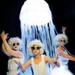 Puccini Jellyfish 2013